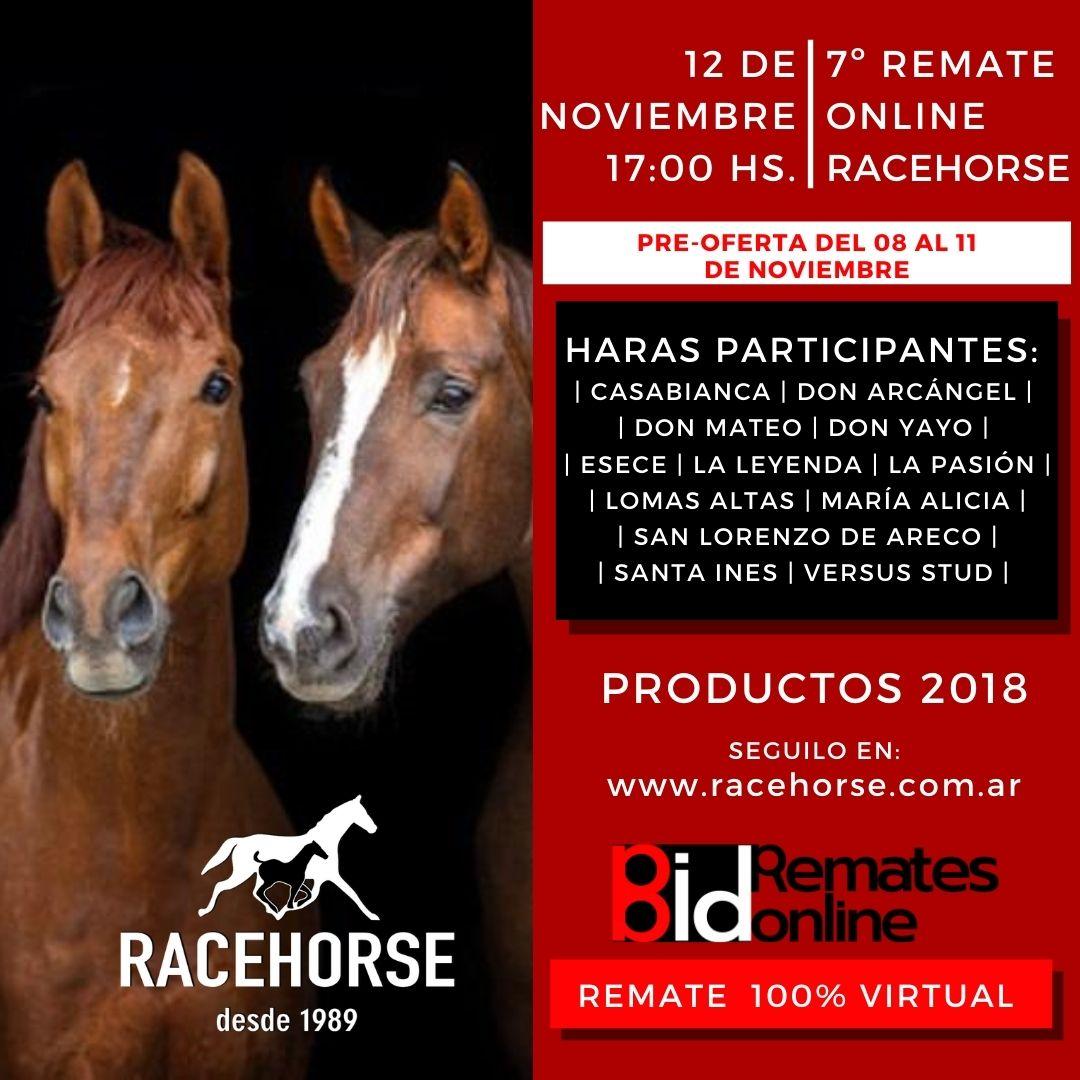 7º Remate por Internet - RACEHORSE ARGENTINA