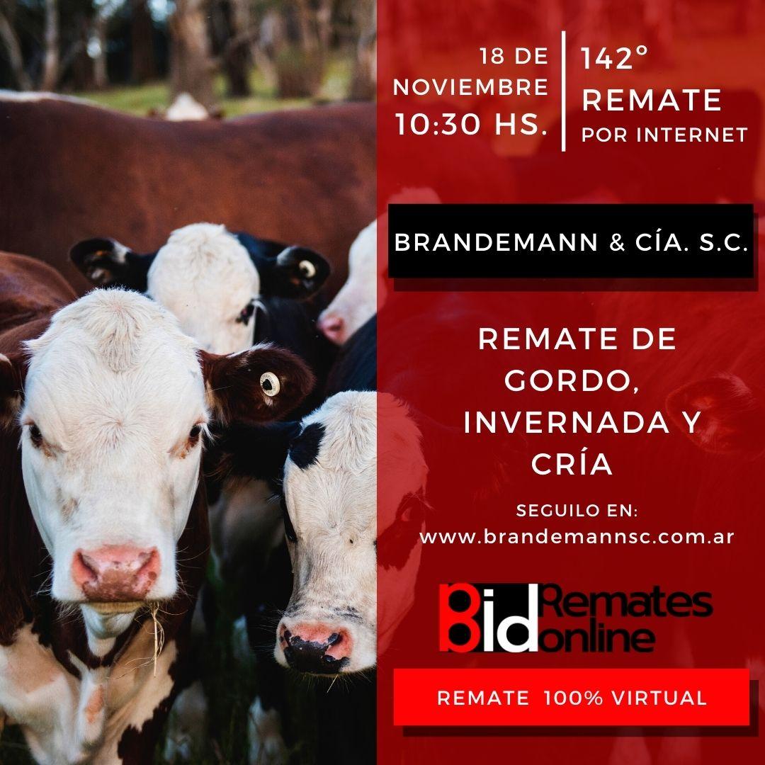 Remate Nº 142 - Brandemann & Cía. S.C.