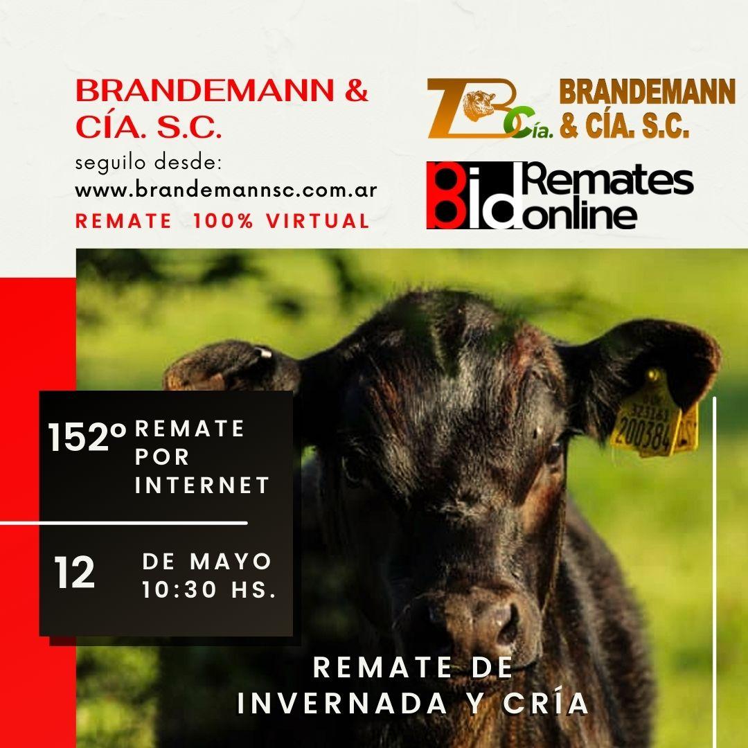 Remate Nº 152 - Brandemann & Cía. S.C.