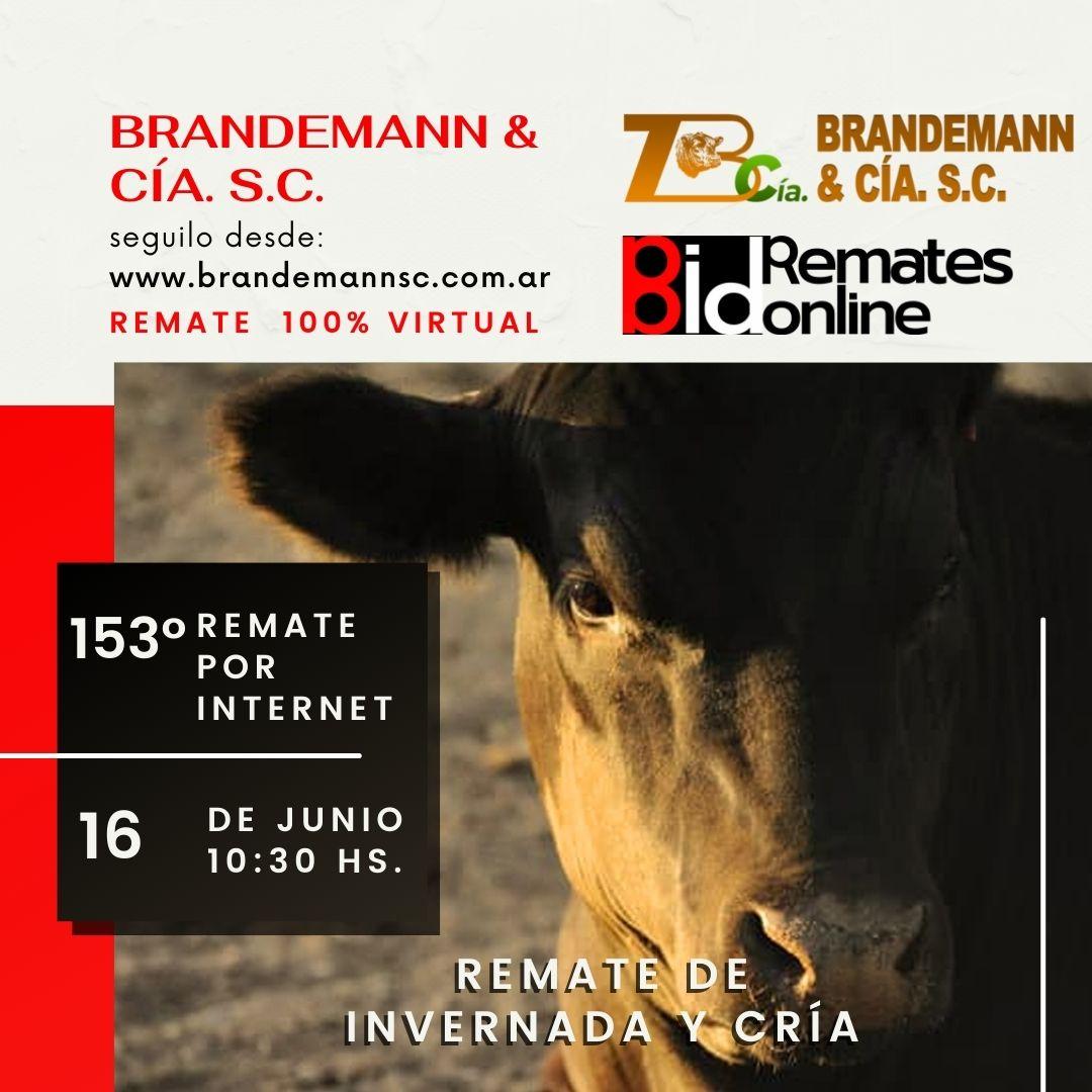 Remate Nº 153 - Brandemann & Cía. S.C.