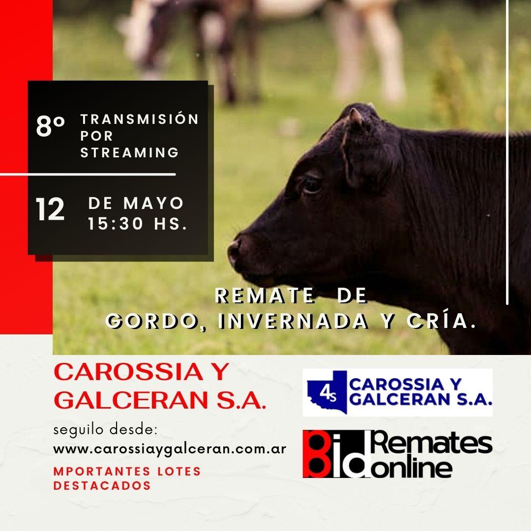 8º TRANSMISIÓN EN VIVI- CAROSSIA Y GALSERAN S.A.
