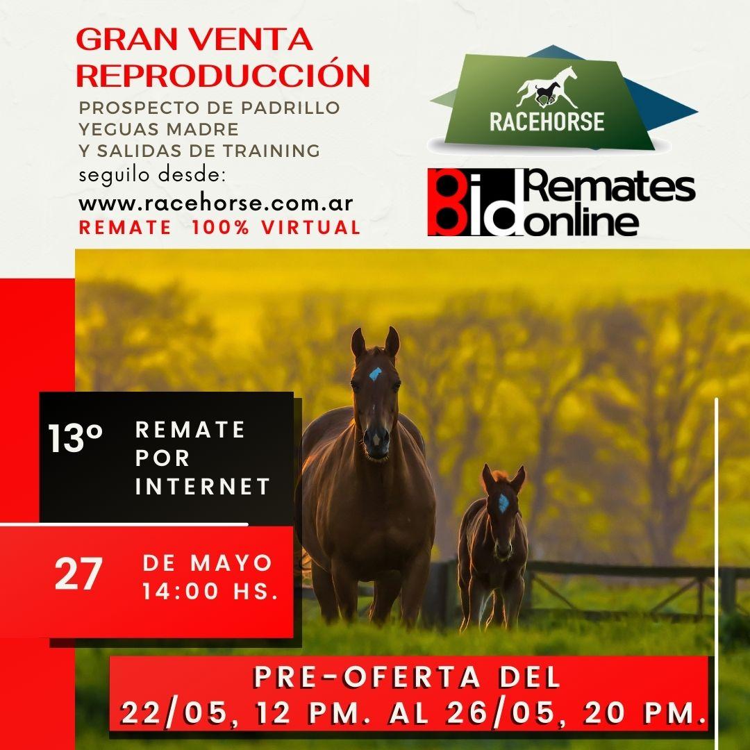 13º Remate por Internet - RACEHORSE ARGENTINA