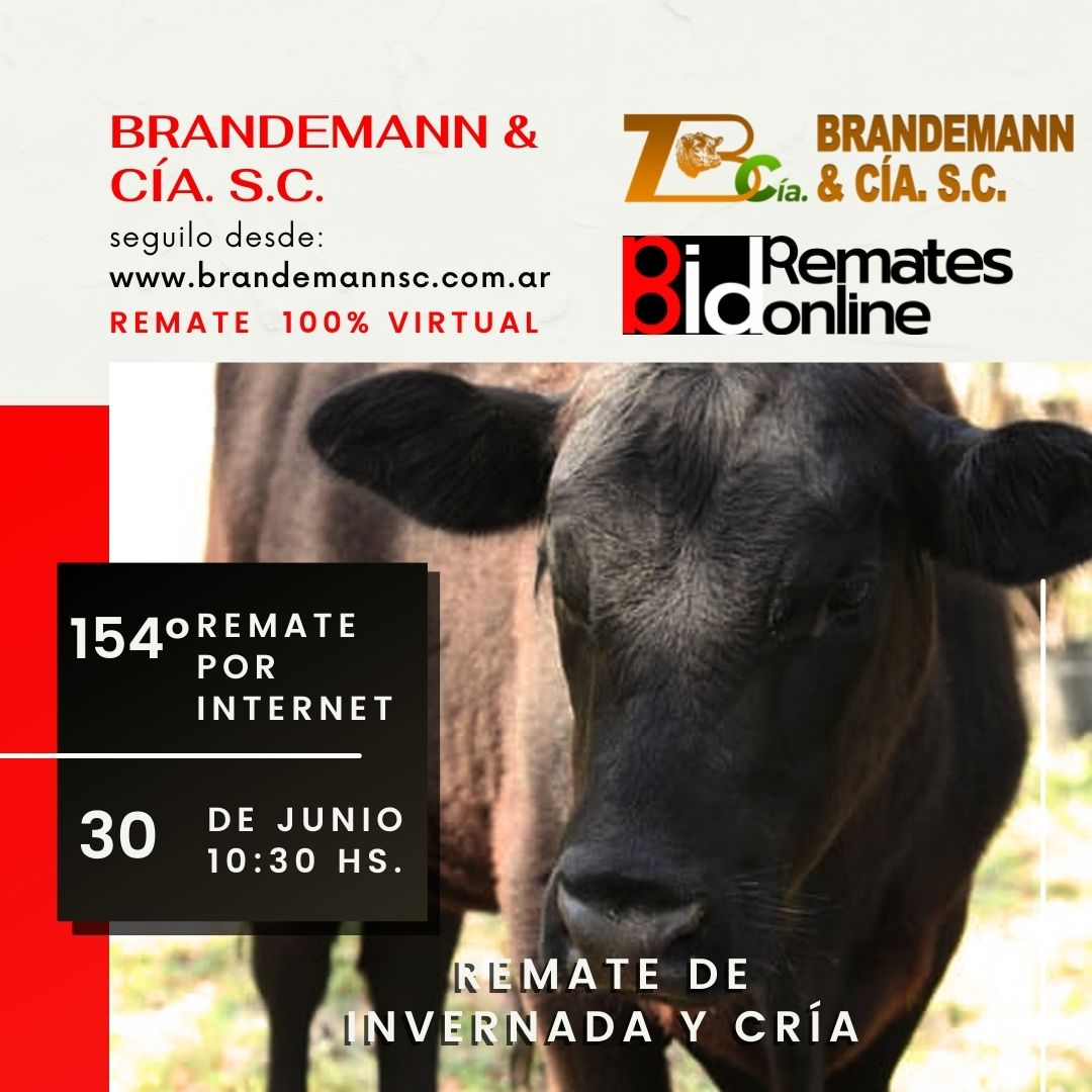 Remate Nº 154 - Brandemann & Cía. S.C.
