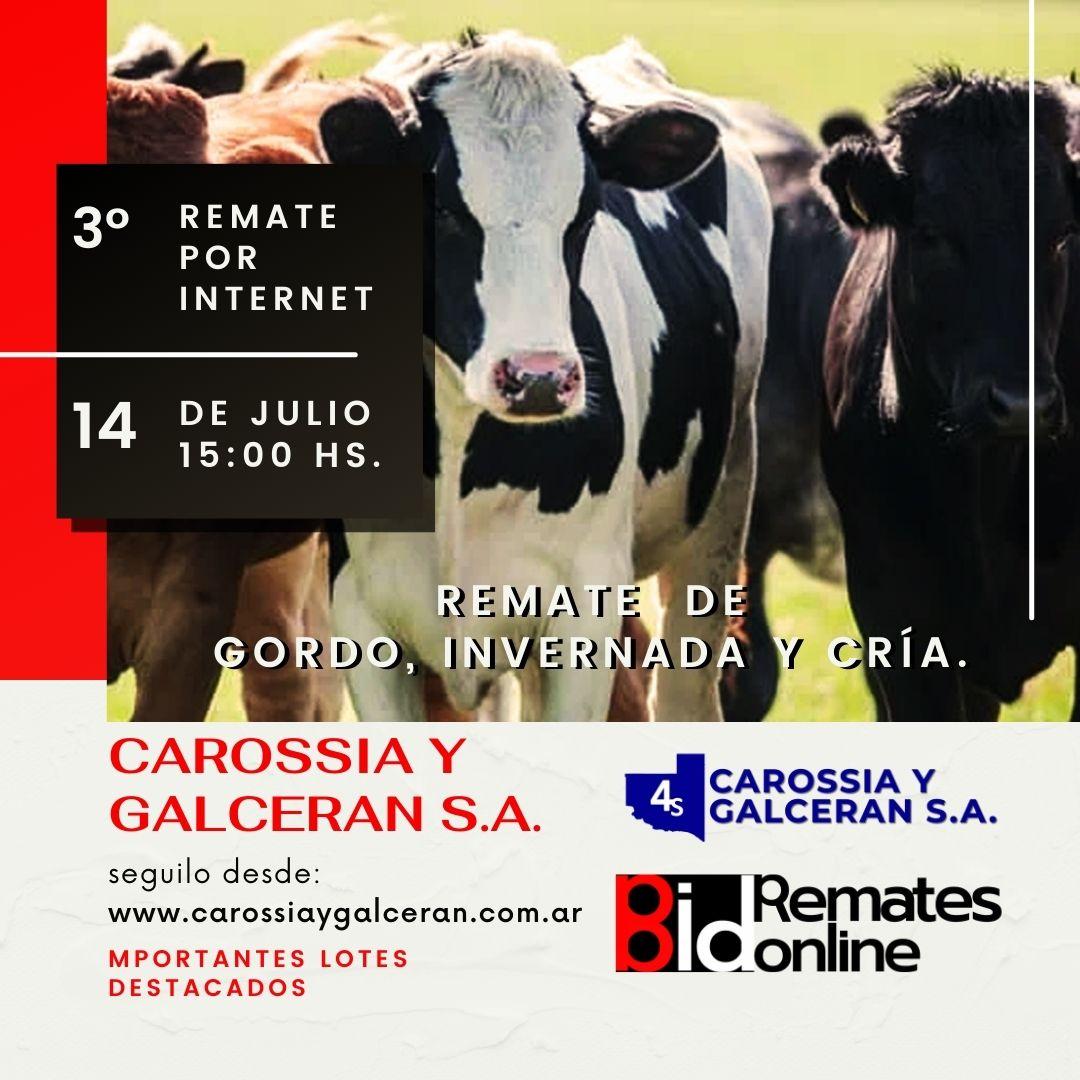 Remate Por Internet Nº 3 - Carossia Y Galceran S.A.