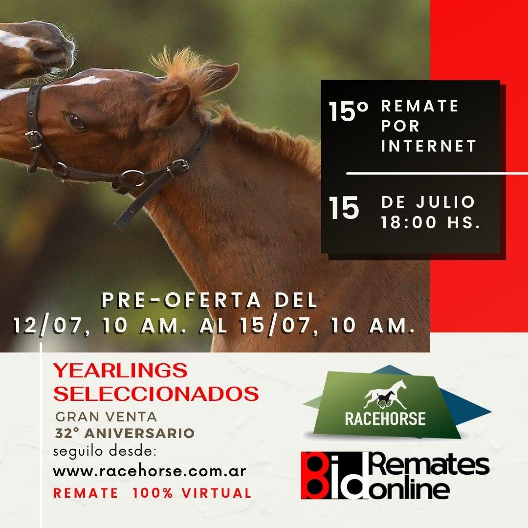 15º Remate por Internet - RACEHORSE ARGENTINA