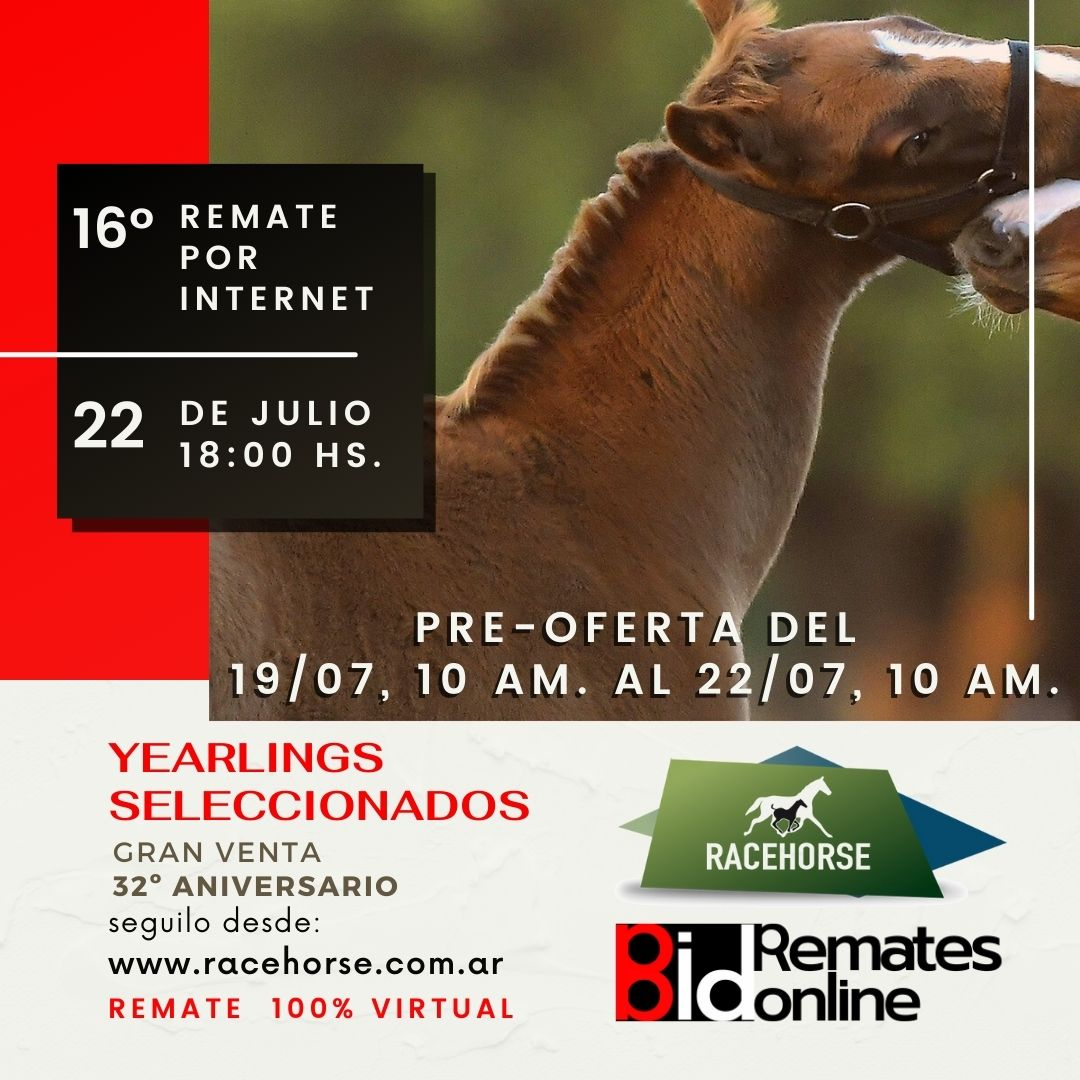 16º Remate por Internet - RACEHORSE ARGENTINA