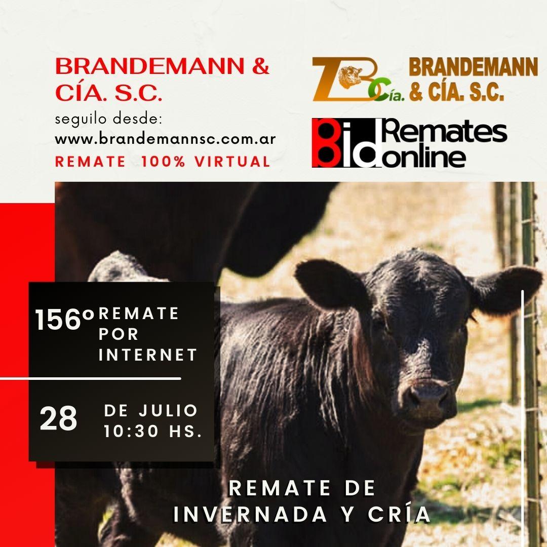 Remate Nº 156 - Brandemann & Cía. S.C