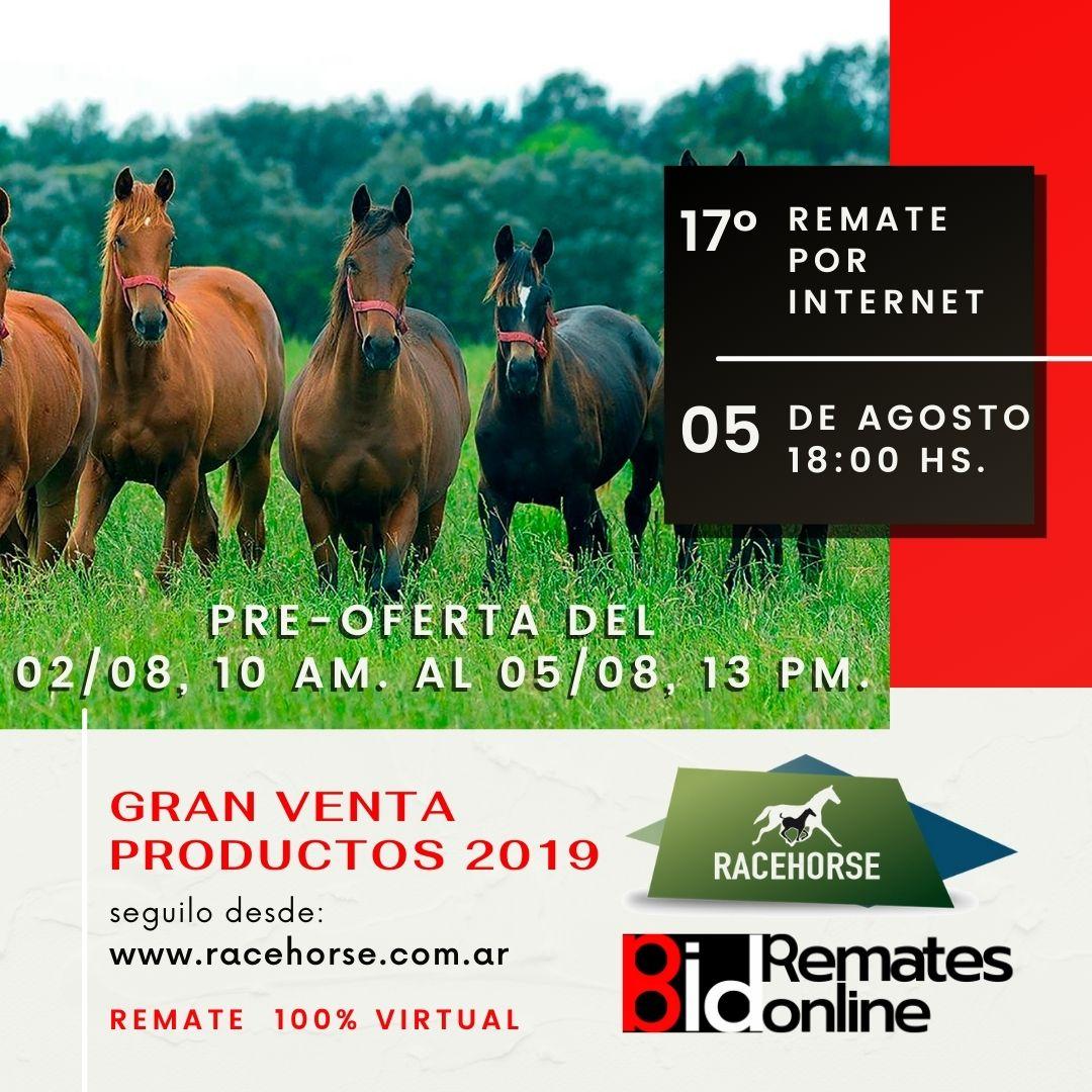 17º Remate por Internet - RACEHORSE ARGENTINA