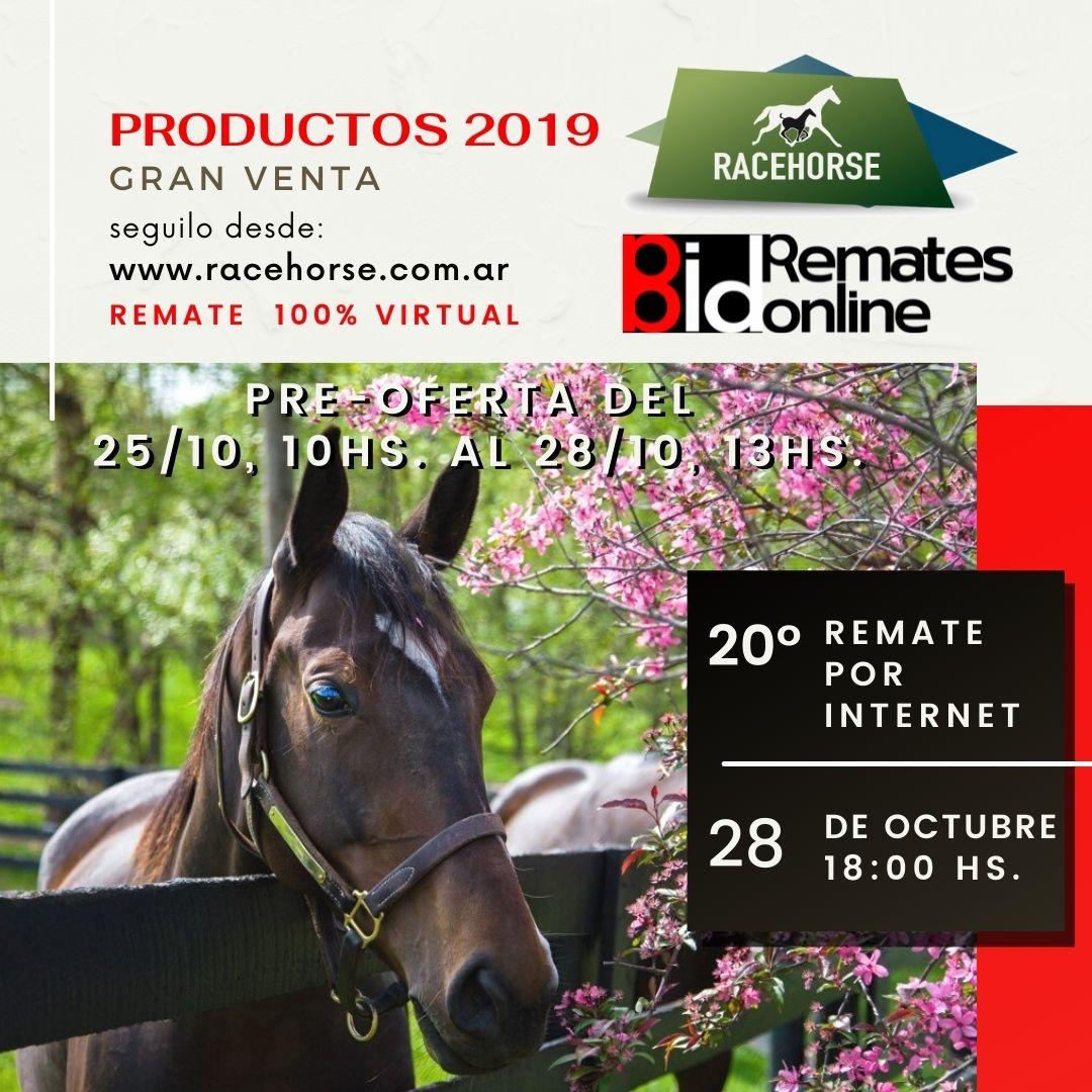 20º Remate por Internet - RACEHORSE ARGENTINA
